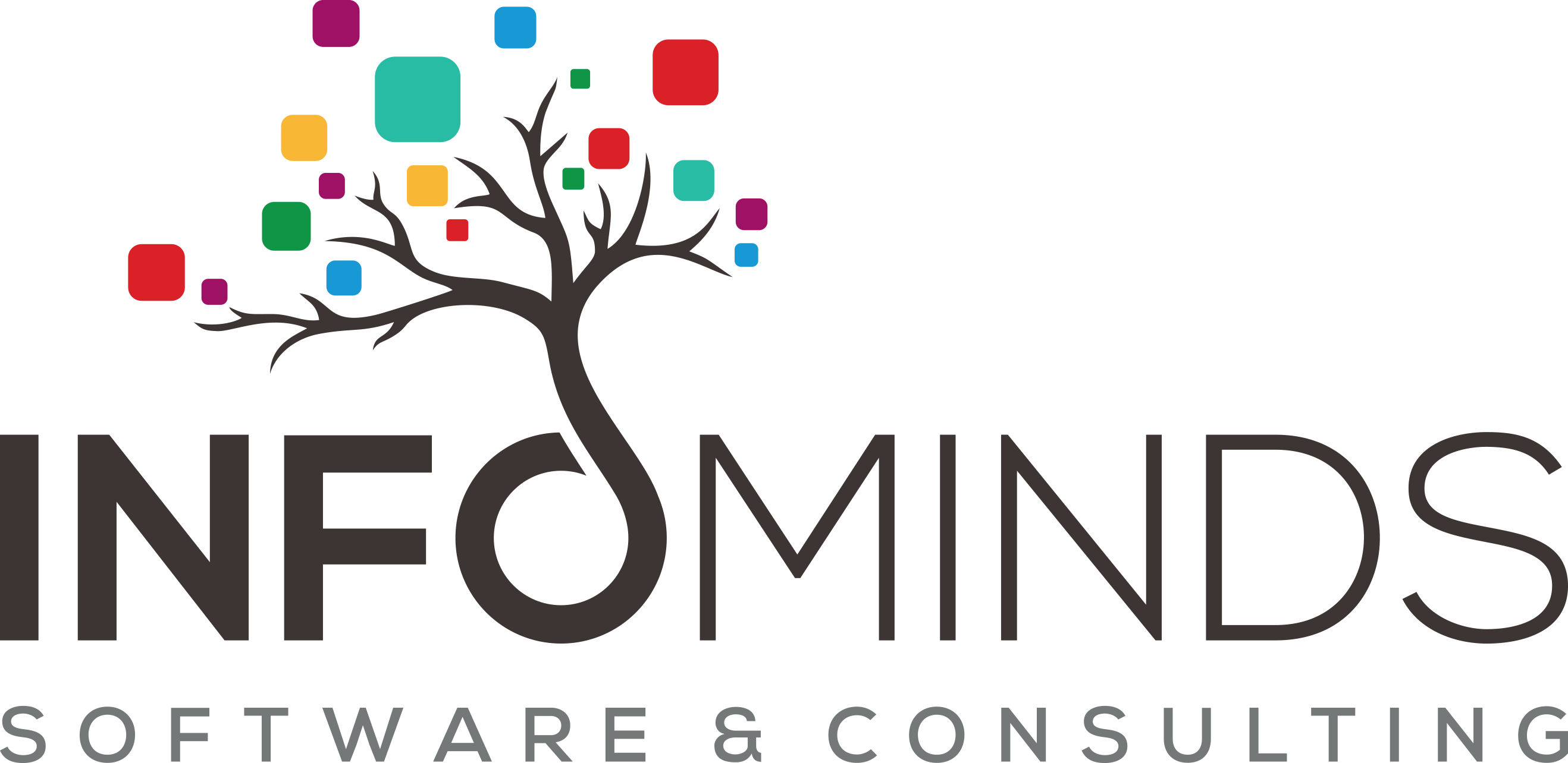 Infominds Software and Consulting